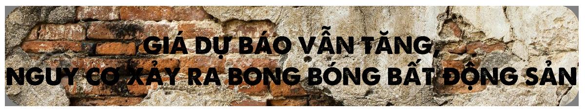 Tit Phu Doanh Nghie Bat Dong San 03